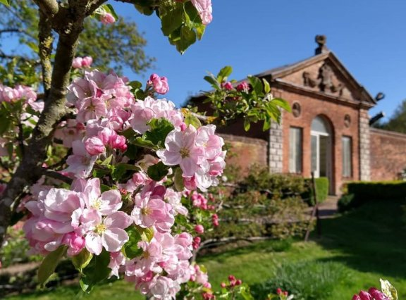 Trustee vacancy – Chair of Castle Bromwich Hall Gardens