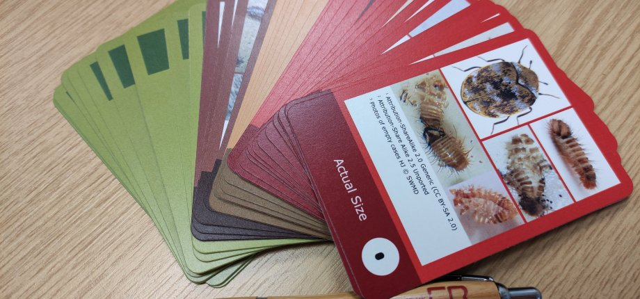 Conservation Resources Save the Museum cards